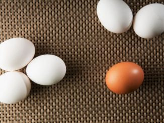 braunen und weißen Eiern